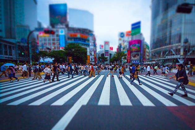roundabout(円形交差点)